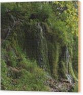 Malanaphy Springs Wood Print