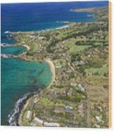 Maui Aerial Of Kapalua Wood Print