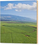 Maui Sugar Cane Wood Print