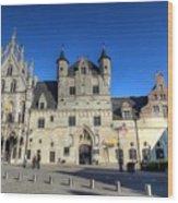 Mechelen Belgium Wood Print