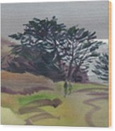 Miramonte Point 1 Wood Print