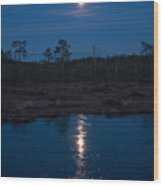 Moon Over Wetlands Wood Print