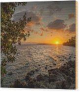 Morning At The Mangroves Wood Print
