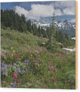 Mountain Meadow Wood Print by Bob Gibbons