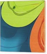 Multicolored Flip Flops Floating In Pool Wood Print