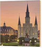 New Orleans St Louis Cathedral Wood Print