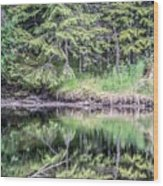 Northern Landscape And Nature In Alaska Panhandle Wood Print