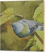 Northern Parula Wood Print