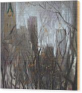 Nyc Central Park Wood Print