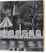 Ocean Palms  Wood Print