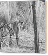 On The Move Wood Print