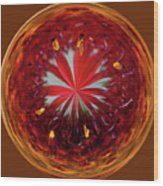 Orb Image Of A Gaillardia Wood Print