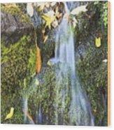 Oregon Cascades, Oregon, Usa Wood Print