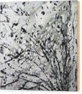 Painting Noir Wood Print