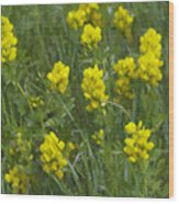 Panorama Hills Bluffs Wood Print