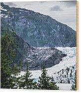 Panoramic View Of Mendenhall Glacier Juneau Alaska Wood Print