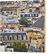 Paris Rooftops Wood Print by Elena Elisseeva