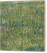 Patch Of Grass Wood Print
