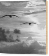2 Pelicans Flying Into The Clouds Wood Print