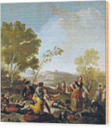 Picnic On The Banks Of The Manzanares Wood Print