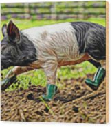 Pig Collection Wood Print