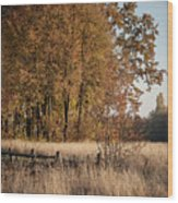 Pirogovo Wood Print
