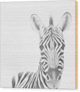 Plains Zebra Wood Print