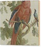 Plants And Animals Wood Print