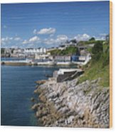 Plymouth Foreshore Wood Print