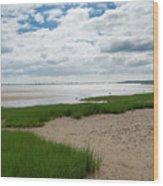 Plymouth, Massachusetts, Beach Wood Print