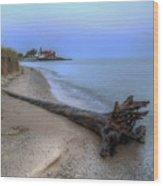 Point Betsie Wood Print