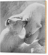 Polar Bear Cubs Wood Print