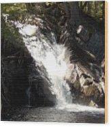 Poplar Stream Falls Wood Print