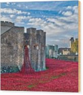 Poppies At The Tower Of London Wood Print