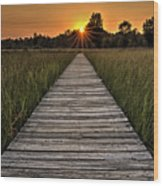 Prairie Boardwalk Sunset Wood Print