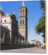 Puebla Mexico 4 Wood Print