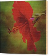 Red Hibiscus Art Wood Print