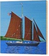 Roseway On Lake Superior Wood Print