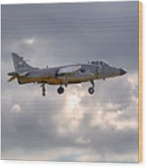 Royal Navy Sea Harrier Wood Print