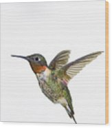Ruby-throated Hummingbird Archilochus Wood Print by Thomas Kitchin & Victoria Hurst