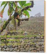 Ruins Of  Machu Picchu Wood Print