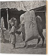 Samarkand: Transport, C1870 Wood Print