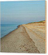 Sandy Neck Beach Wood Print