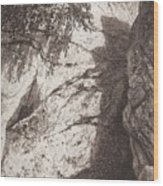 Scala 1892 27h16 Ivan Ivanovich Shishkin Wood Print