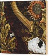 Sea Anemones, 1860 Wood Print