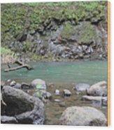 Secret Falls Or Uluwehi Falls Wood Print