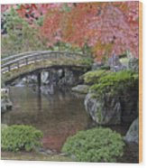 Sento Imperial Palace Gardens Lake Wood Print by Rob Tilley