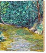 Sewp 5 24 Wood Print
