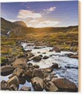 Seydisfjordur Fjord Valley Wood Print