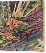Shattered Pine Wood Print